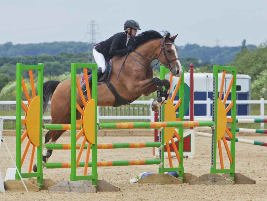 Picture of Show Jumping at Bury Farm