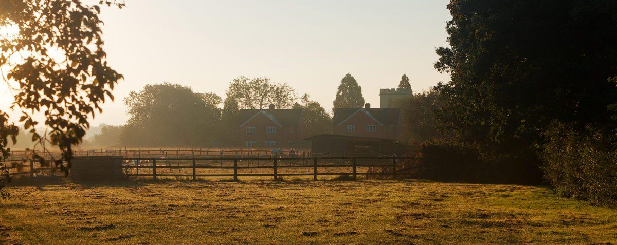 Knyghton Close at Sunrise
